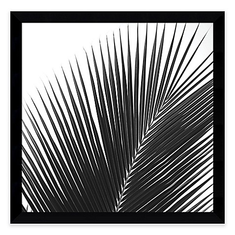 image of Jamie Kingham Palms 14 Framed Photographic Print