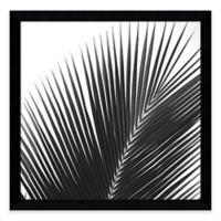 Jamie Kingham Palms 14 Framed Photographic Print