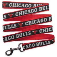 NBA Chicago Bulls Medium Pet Leash
