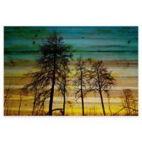 Parvez Taj 45-Inch x 30-Inch Emerald Sky Pine Wood Wall Art