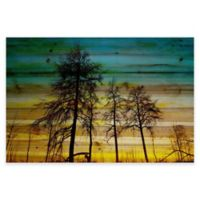 Parvez Taj 60-Inch x 40-Inch Emerald Sky Pine Wood Wall Art
