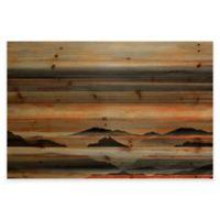 Parvez Taj 60-Inch x 40-Inch Desert Mountains Pine Wood Wall Art