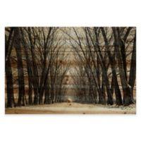 Parvez Taj Tree Path 45-Inch x 30-Inch Pine Wood Wall Art