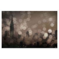 Parvez Taj NY Sleeping 18-Inch x 12-Inch Canvas Wall Art