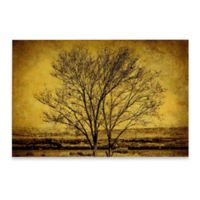 Marmont Hill Entwined Trees 60-Inch x 40-Inch Canvas Wall Art