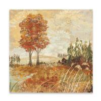 Marmont Hill Grand Vista II 24-Inch x 24-Inch Canvas Wall Art