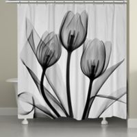 Laural Home® Tulips Shower Curtain in White/Black
