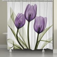 Laural HomeR Tulips Shower Curtain In White Purple
