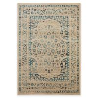 Safavieh Evoke Shadi 4-Foot x 6-Foot Area Rug in Beige/Turquoise