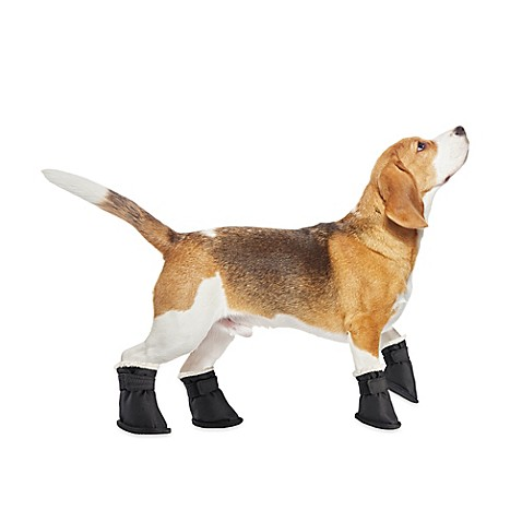 Pawslife™ Pet Boots in Black (Set of 4)