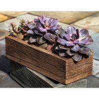 Buy Decorative Indoor Planters Bed Bath And Beyond Canada