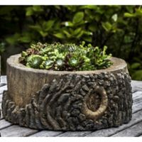 Campania Elm Planter in Natural Bark