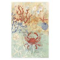 Marmont Hill 24-Inch x 36-Inch Coastal Floral Frenzy IV Canvas Wall Art