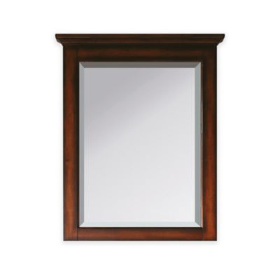 Avanity Tropica 24 Inch X 32 Inch Rectangular Mirror In Antique Brown