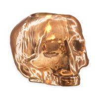 Kosta Boda Still Life Skull Votive Holder in Copper