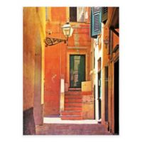 Liguria Alley Photographic All Weather Outdoor Canvas Wall Art