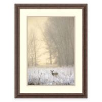 Jason Savage White-Tailed Deer in Fog Framed Photographic Wall Art