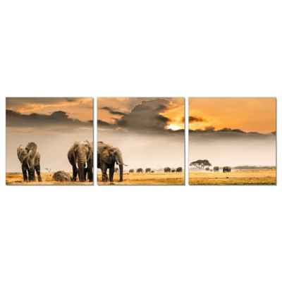 Elementem Photography Plains of Africa 3-Panel Photographic Triptych Wall Art