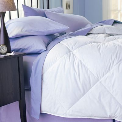 pacific coast feather co yearround down king comforter in white