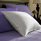 Restful Nights Co.® Year-Round Down Pillow in White