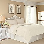 Vellux® Plush Lux King Blanket in Trooper Ivory