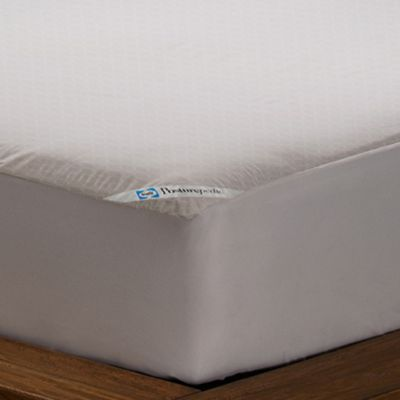 Sealy Posturepedic Allergy Protection Queen Mattress Cover