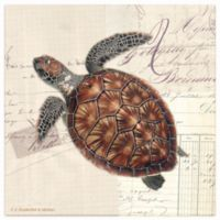 Thirstystone® Occasions Sea Turtle Square Coaster