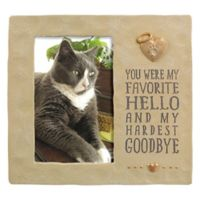 Grasslands Road® 4-Inch x 6-Inch Pet Memorial Cement Picture Frame