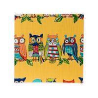 Glenna Jean Lil Hoot Owl Wall Art