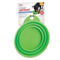 Small Collapsible Pet Bowl in Green