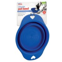 Large Collapsible Pet Bowl in Blue