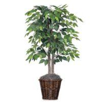 Vickerman 4-Foot Fabric Ficus Bush in Rattan Basket