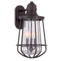 Quoizel Marine Extra Large Wall Lantern in Western Bronze