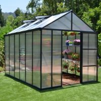 Palram Glory 8-Foot x 12-Foot Greenhouse