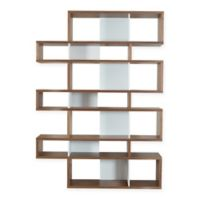 Tema Furniture Inc. London Composition Bookcase in Walnut/White