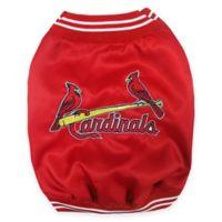 MLB® Small St. Louis Cardinals Pet Dugout Jacket