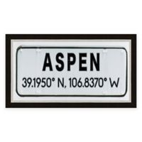 Aspen Colorado Coordinates Framed Wall Art