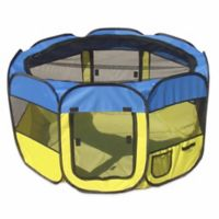 All-Terrain Large Collapsible Travel Pet Playpen in Blue/Yellow