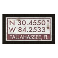 Tallahassee, Florida Coordinates Framed Wall Art