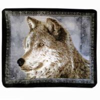 Snowy Wolf Oversized Throw in Grey