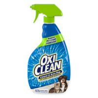 OxiClean™ 24 oz. Carpet and Area Rug Pet Stain and Odor Remover
