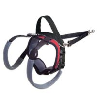 Small Dog Rear Lifting Harness in Red