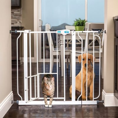carlson extra wide pet gate in white - Carlson Pet Products
