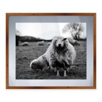 Momma Sheep Large Framed Graphic Art