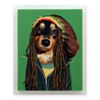 "Empire Art Direct Pets Rock™ Giclee Printed ""Reggae"" Canvas Wall Art"