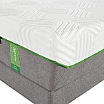 Tempur-Pedic® TEMPUR-Flex® Supreme Full Mattress