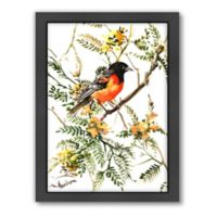 Americanflat Baltimore Oriole Wall Art