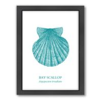 Americanflat Original Samantha Ranlet Collection Scallop Wall Art