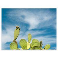 GreenBox Art Murals That Stick 35-Inch x 28-Inch Cactus Sky Wall Art