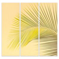 Palm Tree Tryptich Wall Art (Set of 3)